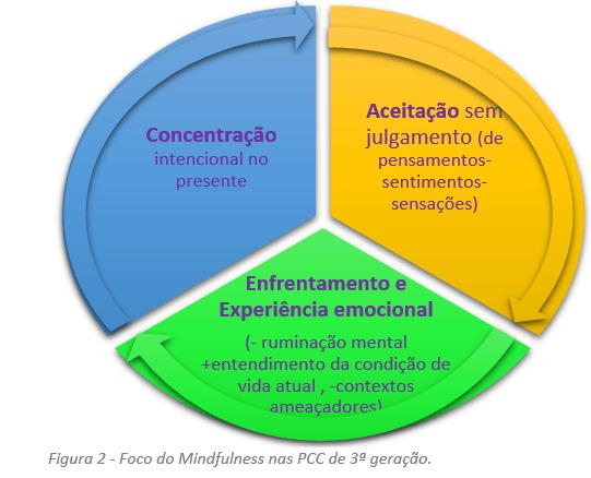 Foco do Mindfulness nas psicoterapia cognitivo-comportamental de 3ª geração.